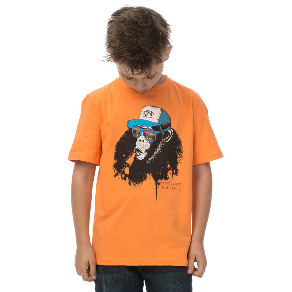 Product image of Animal Boys Honkie Graphic Printed T Shirt CL5SG625 Yellow