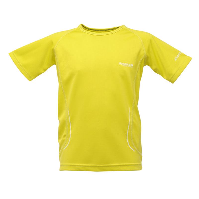 Product image of Regatta Kids Boys Kaktus T Shirt Green