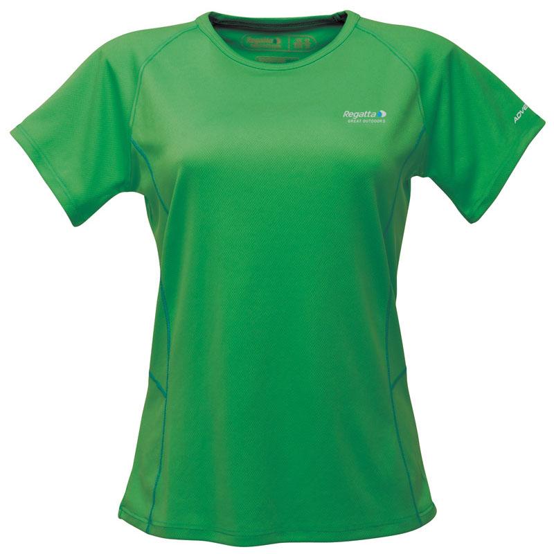 Product image of Regatta Ladies Alyssah T Shirt