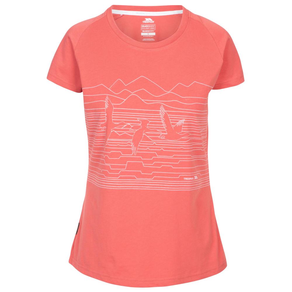 Trespass Womens Dunebug Round Neck Short Sleeve T Shirt 14/l - Bust 38 (96.5cm)